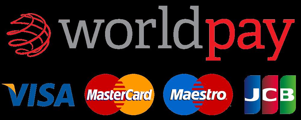 Visa Mastercard Maestro JCB